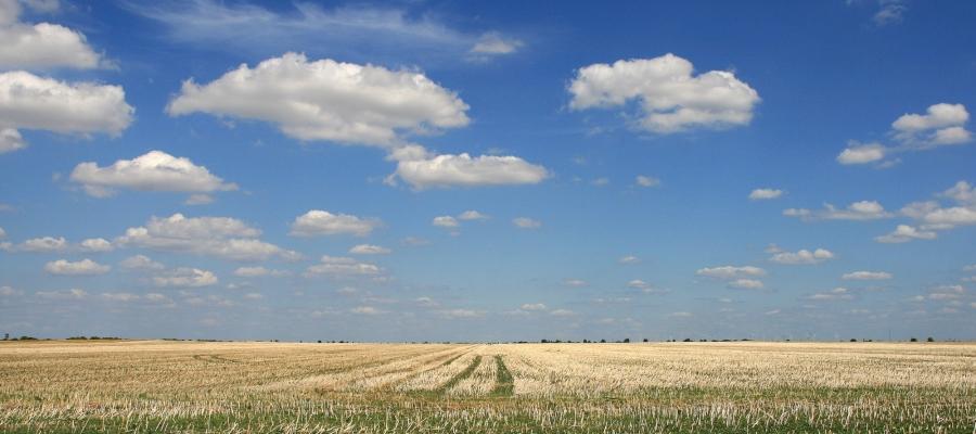 Landwirtschaft-1-2.jpg