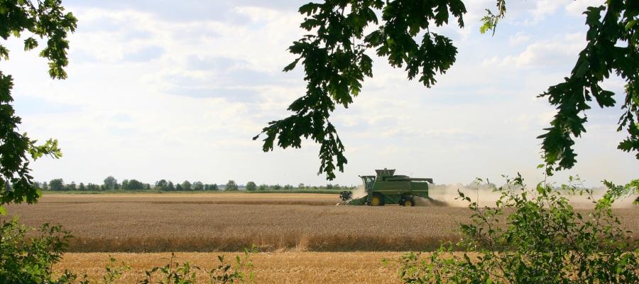 Landwirtschaft-3-1.jpg