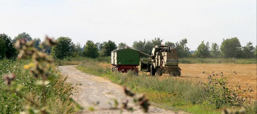 Landwirtschaft-5-1.jpg